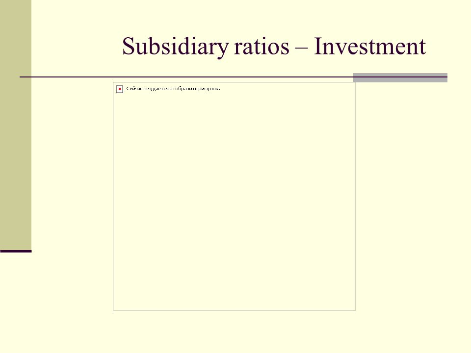 Subsidiary ratios – Investment