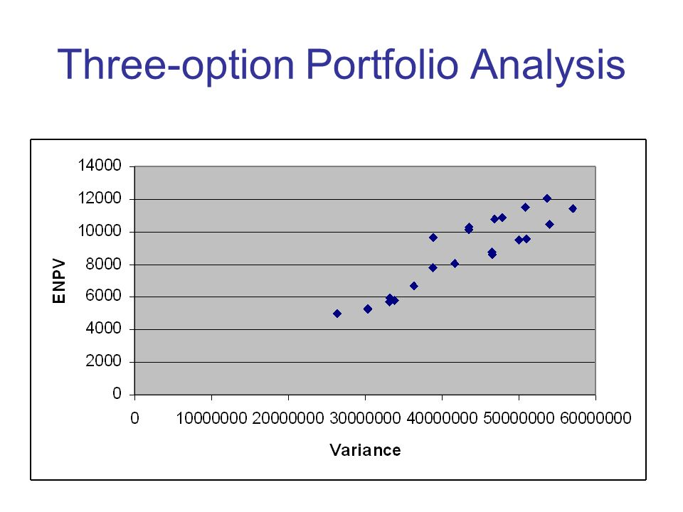 Three-option Portfolio Analysis