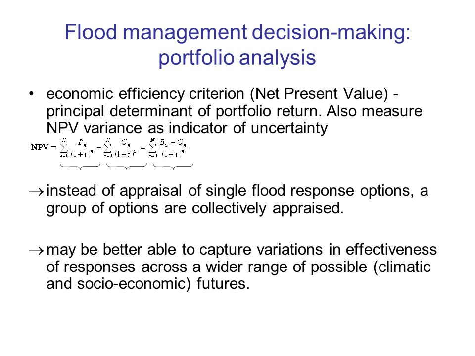 Flood management decision-making: portfolio analysis economic efficiency criterion (Net Present Value) - principal determinant of portfolio return.