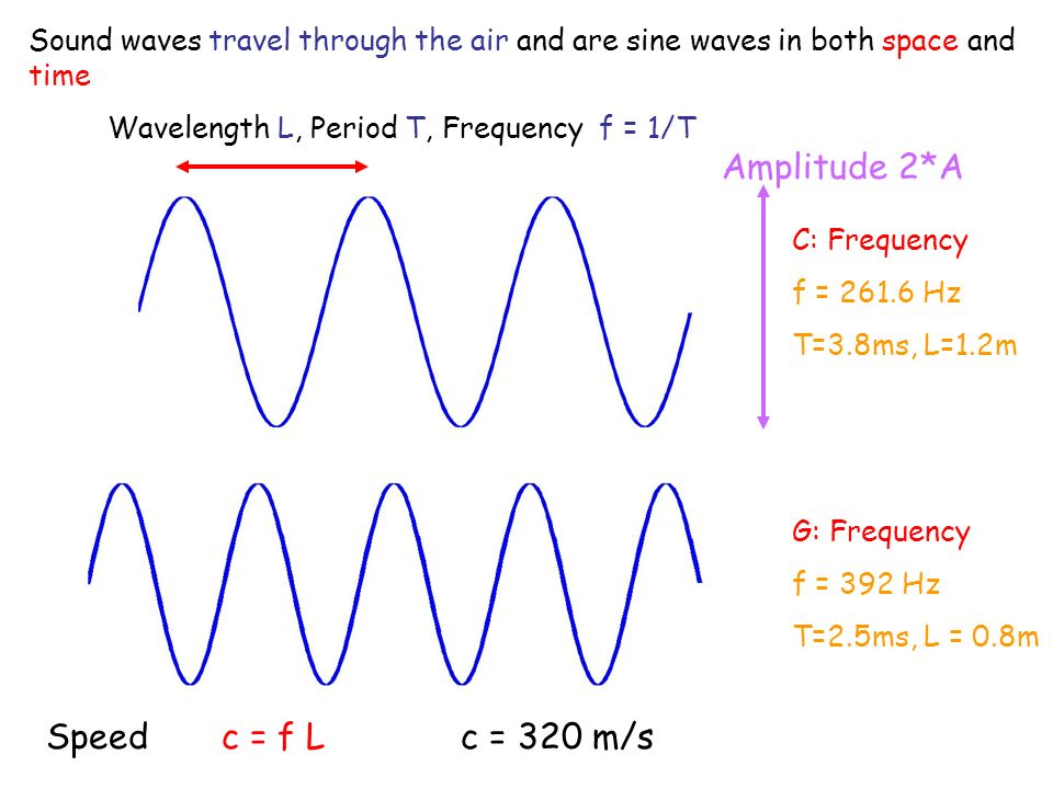 C: Frequency f = 261.6 Hz T=3.8ms, L=1.2m G: Frequency f = 392 Hz T=2.5ms, L = 0.8m Wavelength L, Period T, Frequency f = 1/T Amplitude 2*A Sound waves travel through the air and are sine waves in both space and time Speed c = f L c = 320 m/s