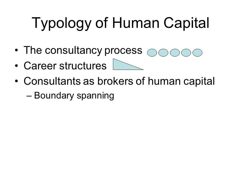 Typology of Human Capital The consultancy process Career structures Consultants as brokers of human capital –Boundary spanning