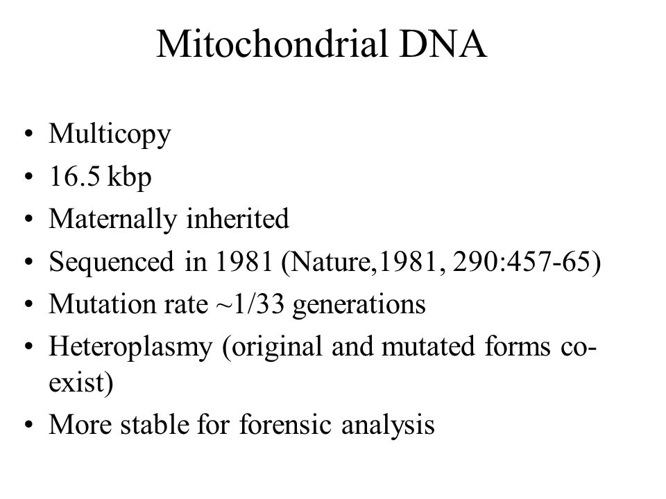Mitochondrial DNA Multicopy 16.5 kbp Maternally inherited Sequenced in 1981 (Nature,1981, 290:457-65) Mutation rate ~1/33 generations Heteroplasmy (or