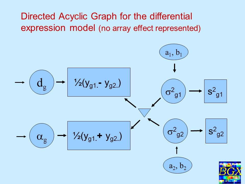 BGX 19 Directed Acyclic Graph for the differential expression model (no array effect represented) a 1, b 1 ½(y g1.