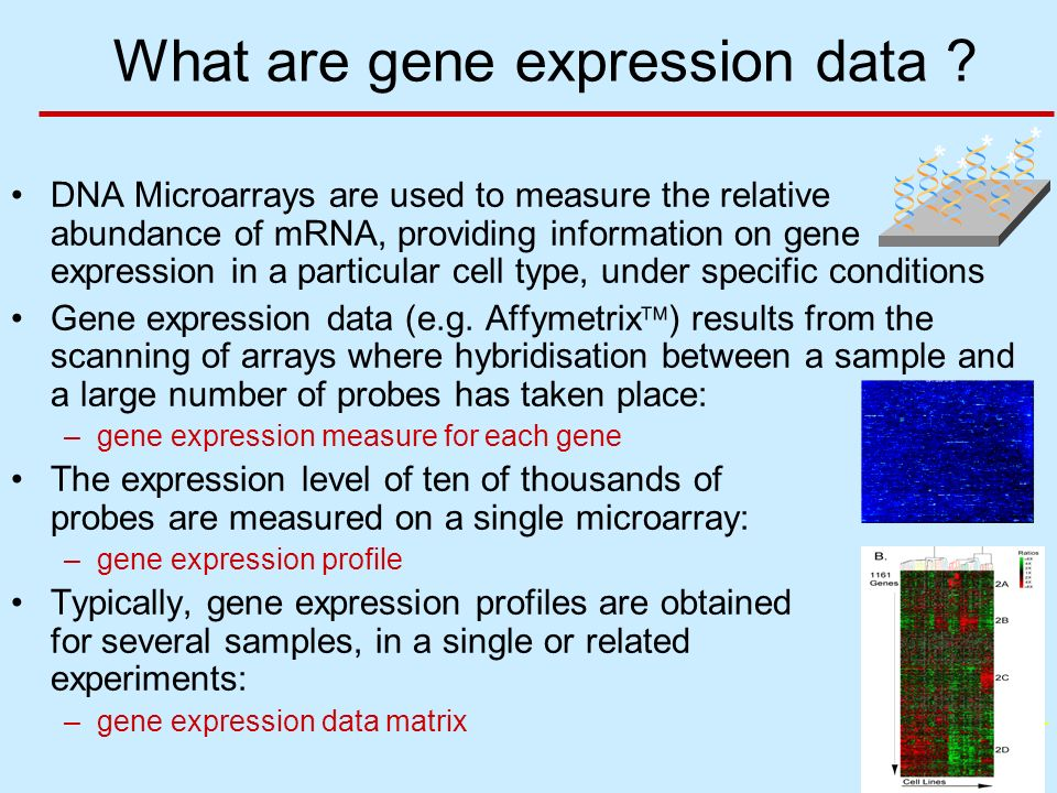 BGX 3 What are gene expression data .
