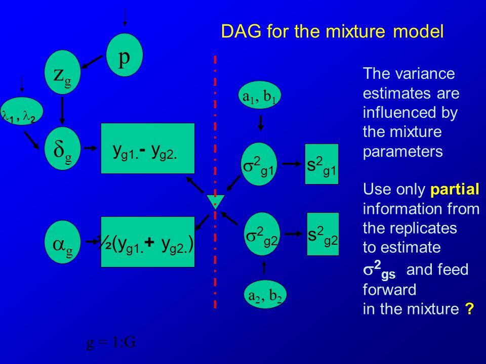 g = 1:G DAG for the mixture model a 1, b 1 ½(y g1. + y g2. ) 1, 2 δgδg 2 g1 s2g1s2g1 2 g2 s2g2s2g2 g zgzg a 2, b 2 p y g1. - y g2. The variance estima