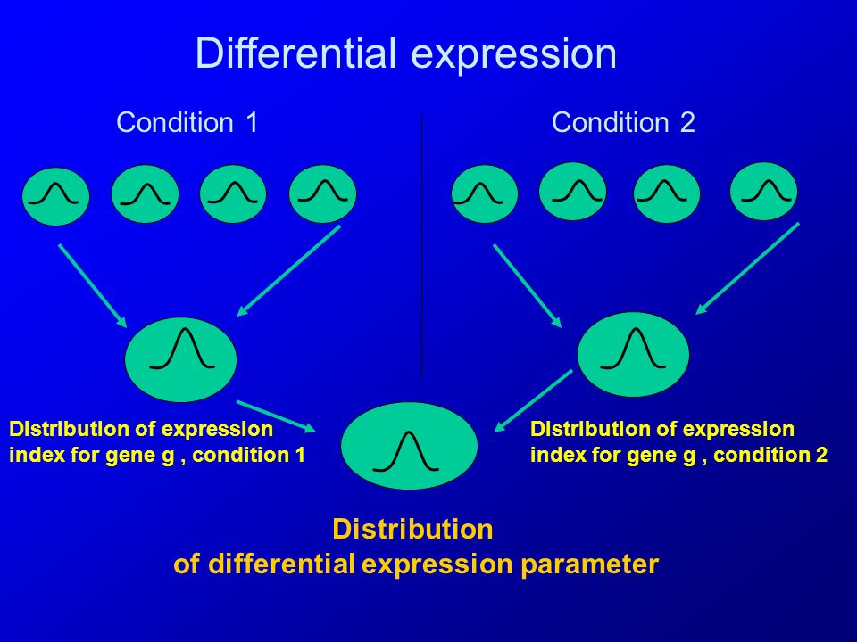 Estimation Estimation of all parameters combines information from biological replicates and between condition contrasts s 2 gs = 1/R s Σ r (y gsr - y gs.