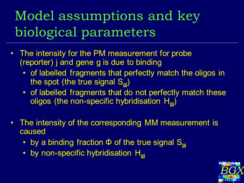 BGX Model assumptions and key biological parameters The intensity for the PM measurement for probe (reporter) j and gene g is due to binding of labelled fragments that perfectly match the oligos in the spot (the true signal S gj ) of labelled fragments that do not perfectly match these oligos (the non-specific hybridisation H gj ) The intensity of the corresponding MM measurement is caused by a binding fraction Φ of the true signal S gj by non-specific hybridisation H gj