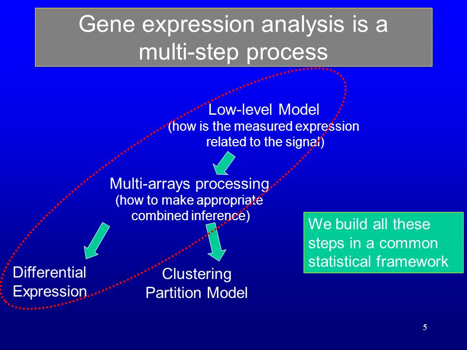 5 Gene expression analysis is a multi-step process Low-level Model (how is the measured expression related to the signal) Multi-arrays processing (how to make appropriate combined inference) Differential Expression Clustering Partition Model We build all these steps in a common statistical framework
