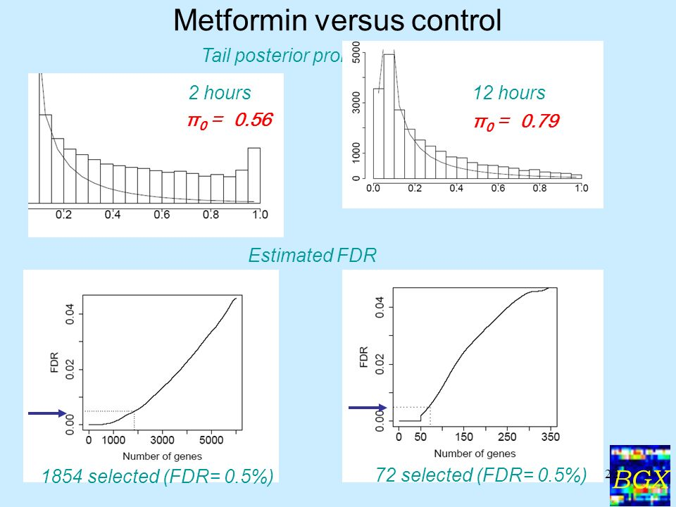 BGX 22 Metformin versus control Tail posterior probabilities Estimated FDR 2 hours12 hours 1854 selected (FDR= 0.5%) 72 selected (FDR= 0.5%) π 0 = 0.56 π 0 = 0.79