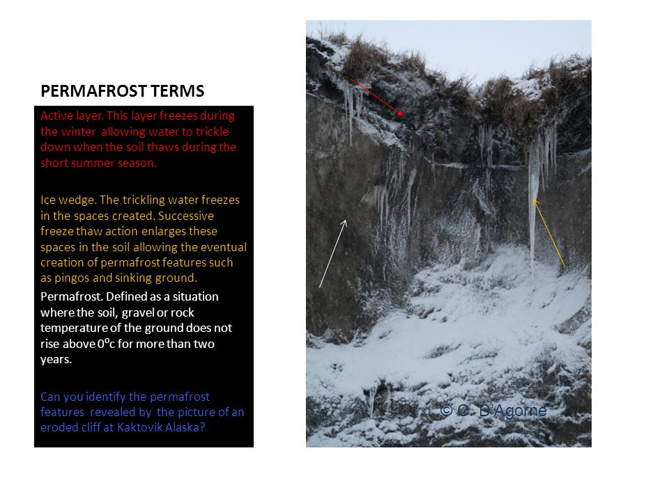 PERMAFROST TERMS Active layer.