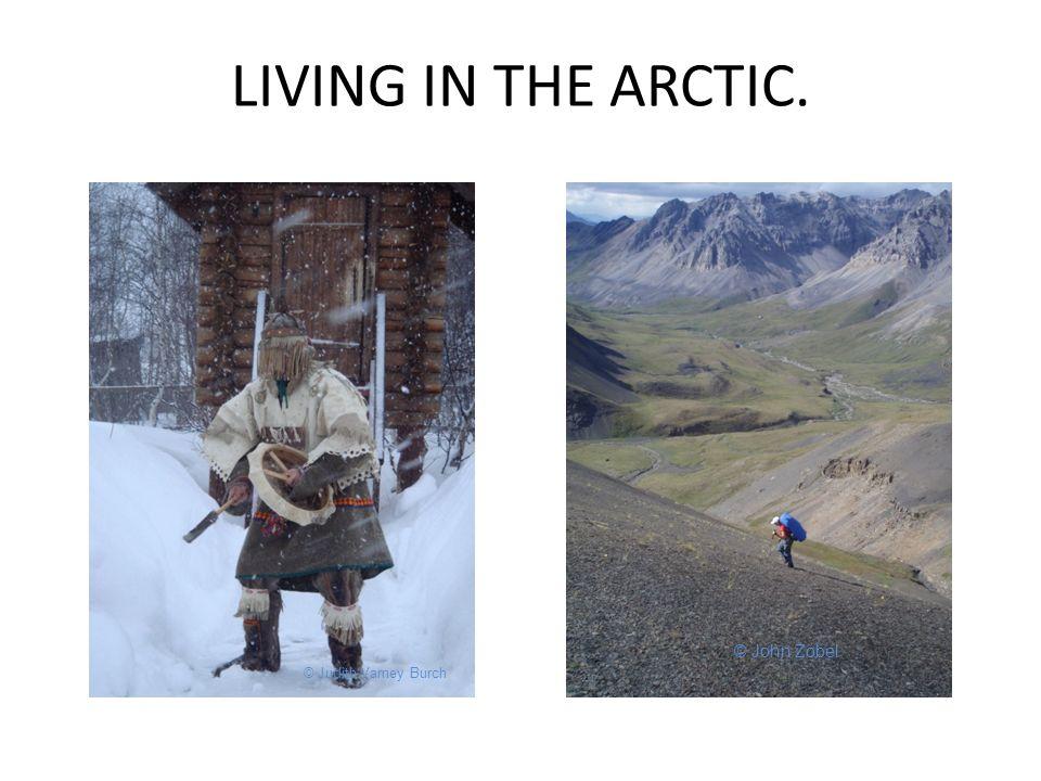 LIVING IN THE ARCTIC. © Judith Varney Burch © John Zobel