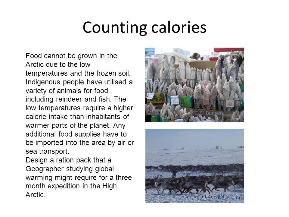 Counting calories © S.