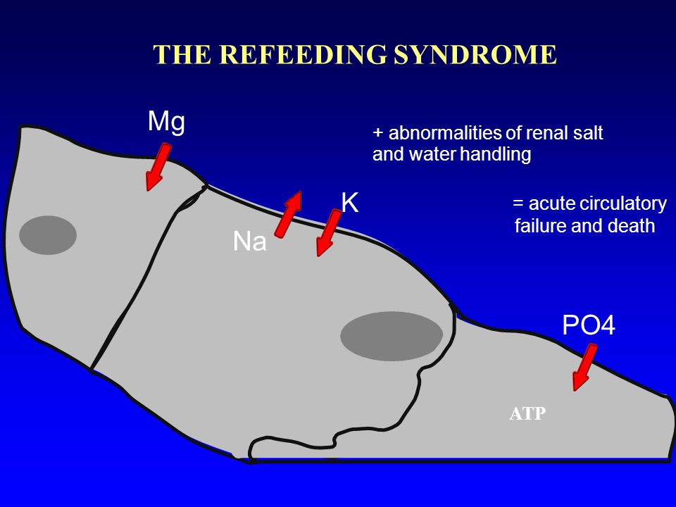 THE REFEEDING SYNDROME K Na Mg PO4 + abnormalities of renal salt and water handling = acute circulatory failure and death ATP