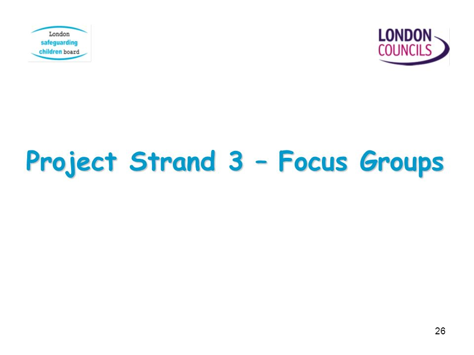 26 Project Strand 3 – Focus Groups