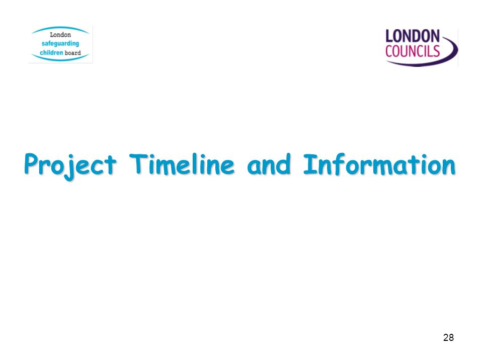 28 Project Timeline and Information