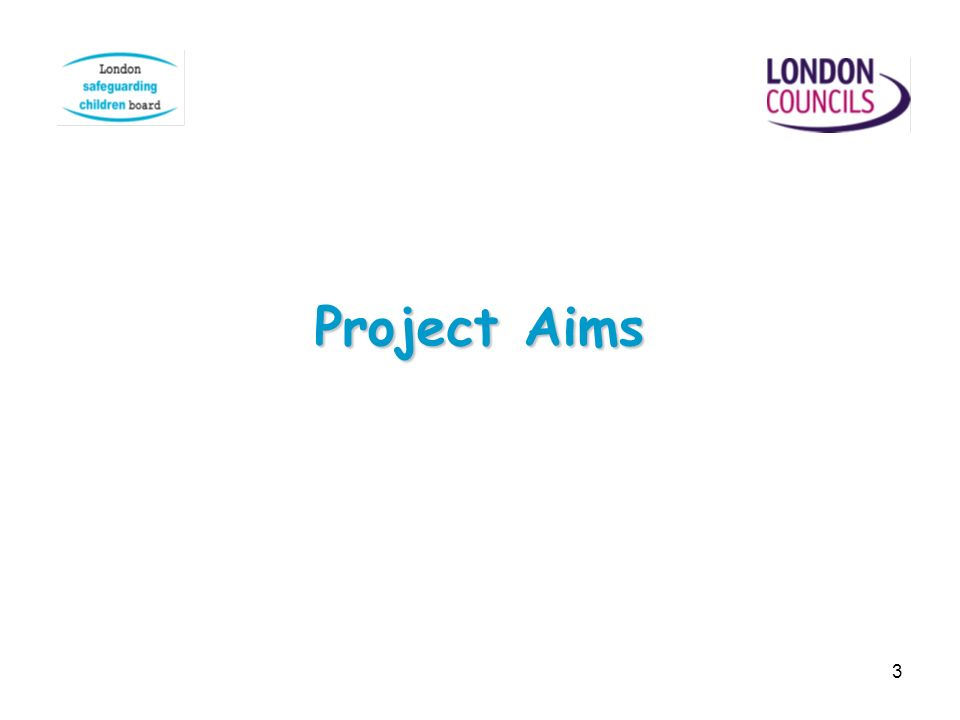 3 Project Aims
