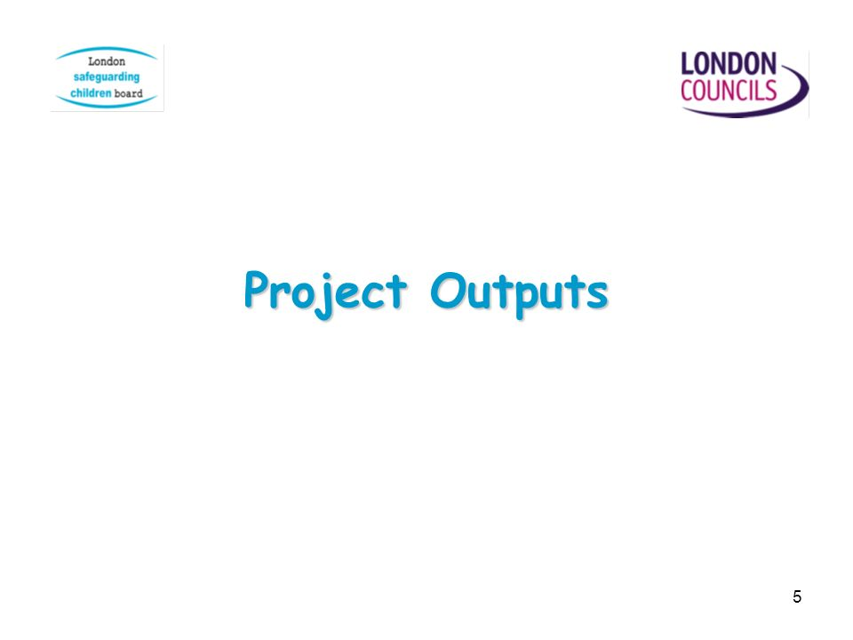 5 Project Outputs