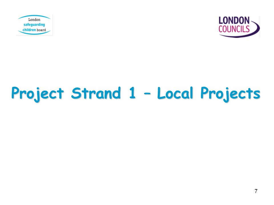 7 Project Strand 1 – Local Projects