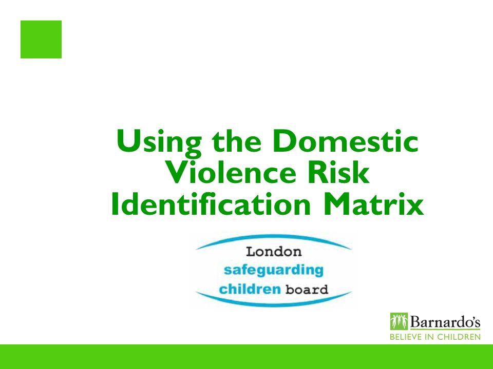 Using the Domestic Violence Risk Identification Matrix