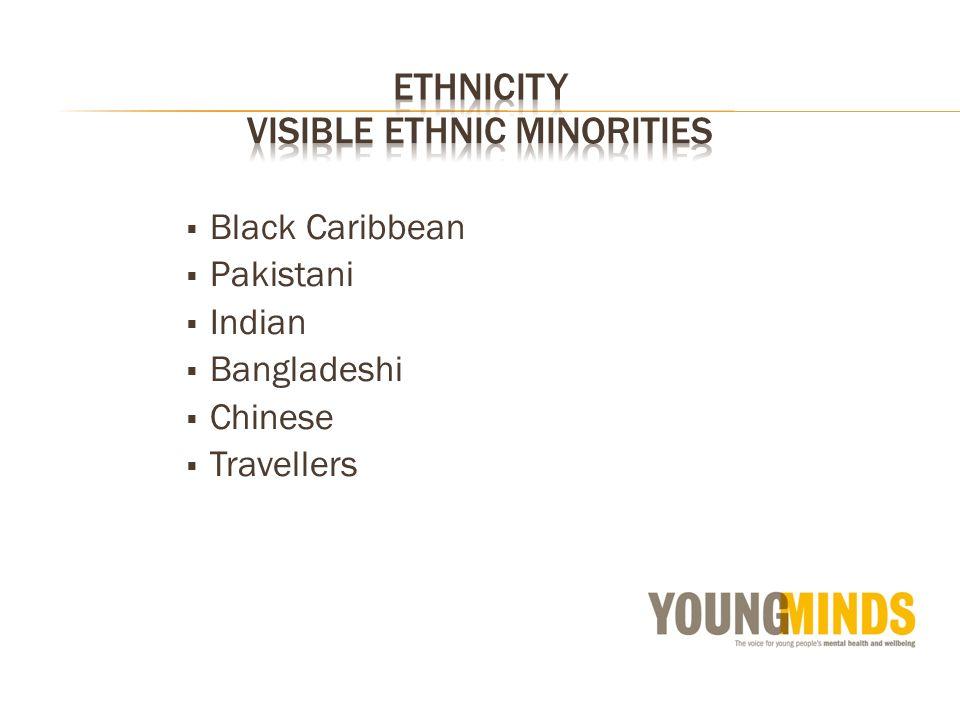 Black Caribbean Pakistani Indian Bangladeshi Chinese Travellers
