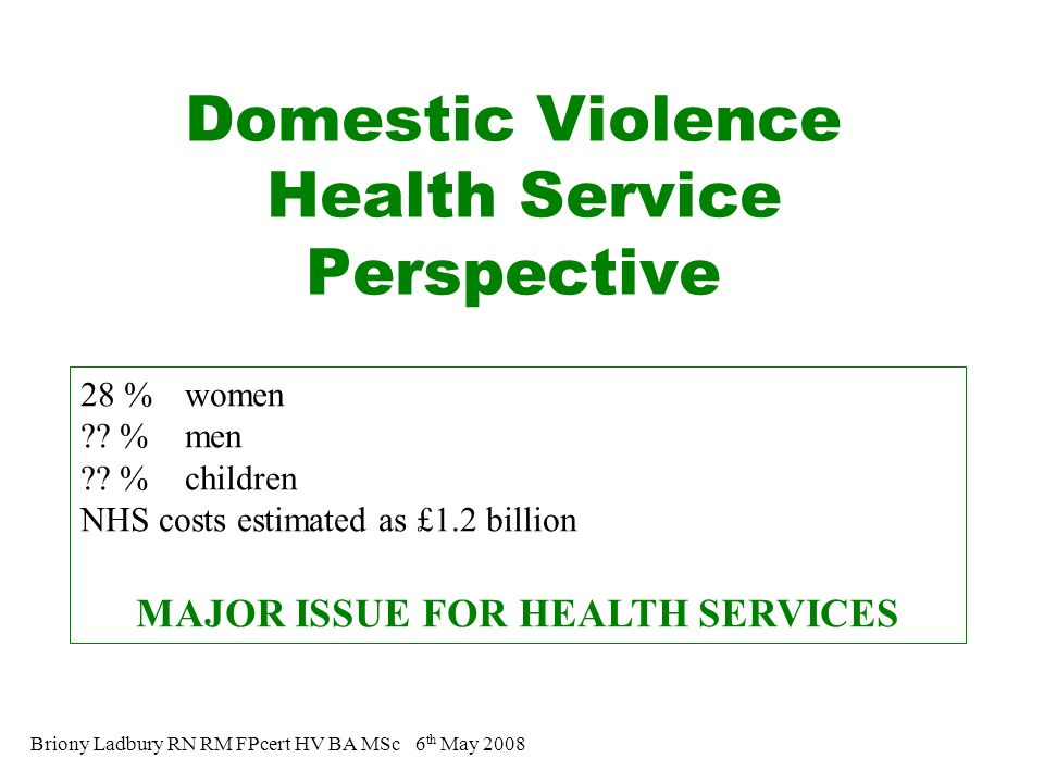 Domestic Violence Health Service Perspective Briony Ladbury RN RM FPcert HV BA MSc 6 th May 2008 28 % women .