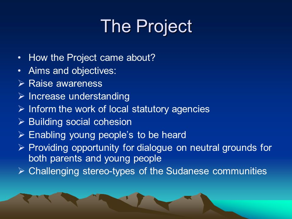 The Project How the Project came about? Aims and objectives: Raise awareness Increase understanding Inform the work of local statutory agencies Buildi