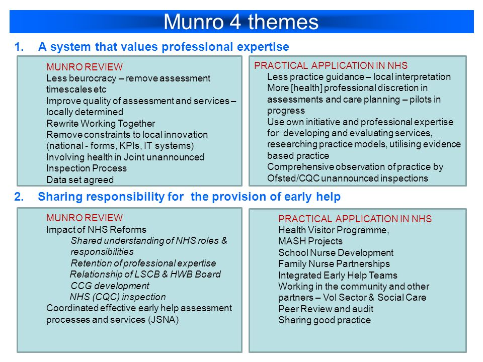Munro 4 themes 1.A system that values professional expertise 2.