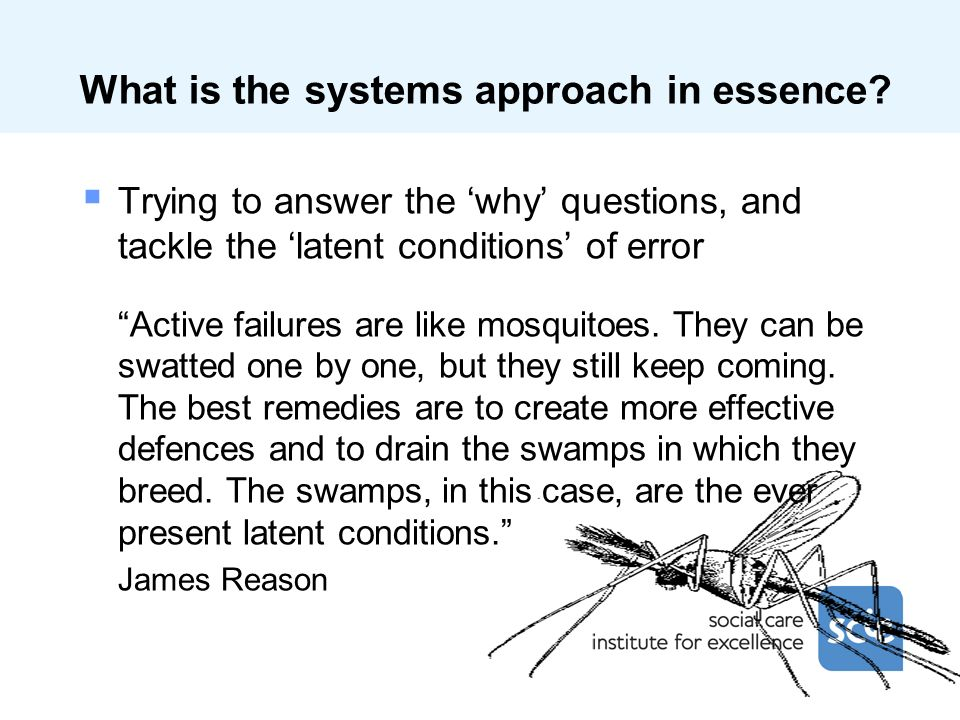 What is the systems approach in essence.