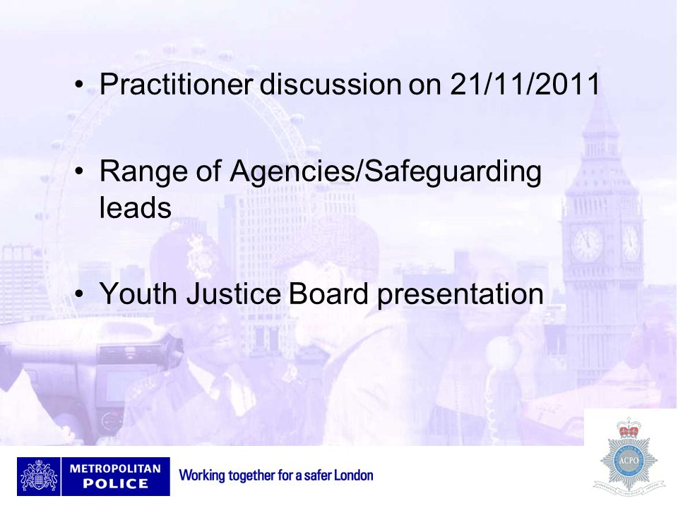 Practitioner discussion on 21/11/2011 Range of Agencies/Safeguarding leads Youth Justice Board presentation