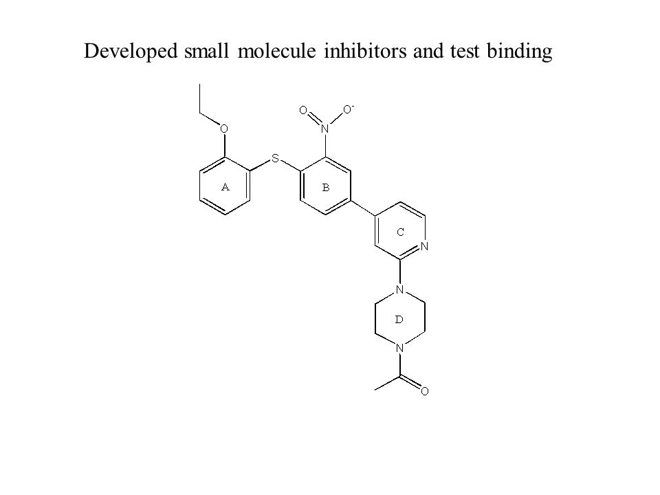 Developed small molecule inhibitors and test binding