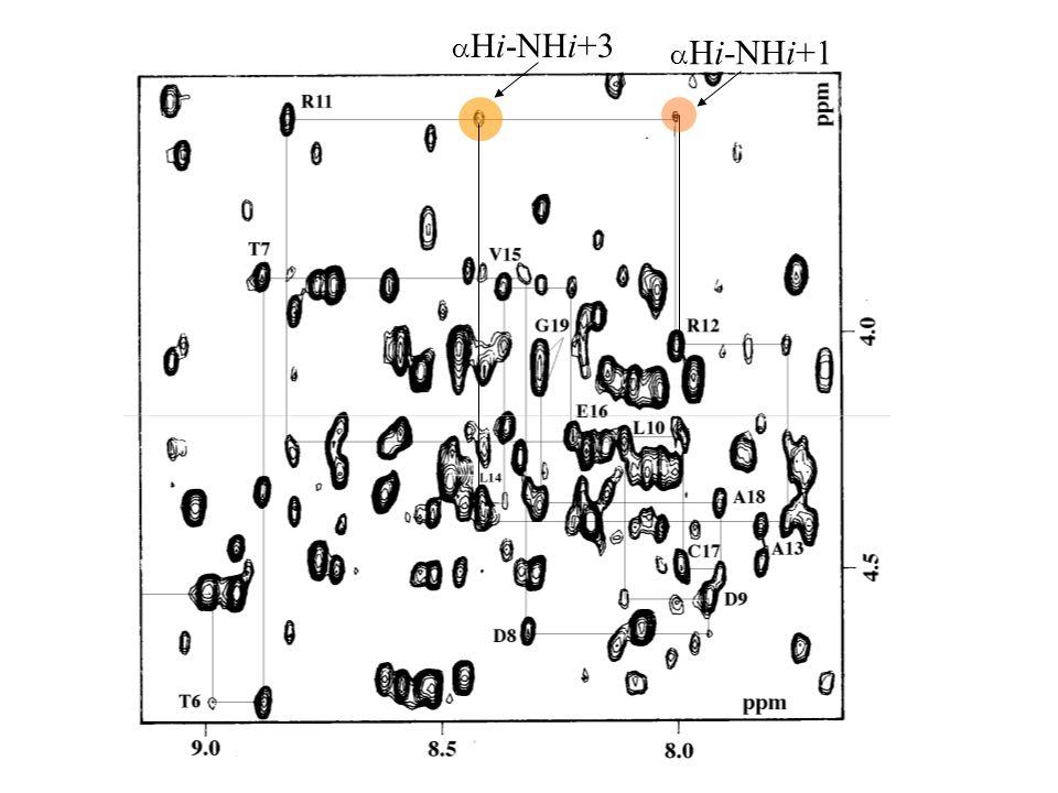 H i i+3 H i+2 NOE H N An -helix can be recognised by repeating patterns of short range nOes.
