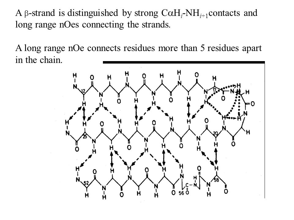 A real example.The rat fatty acid acyl carrier protein.