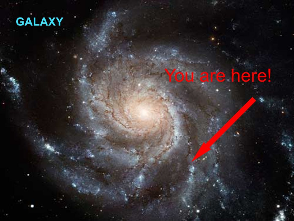You are here! GALAXY