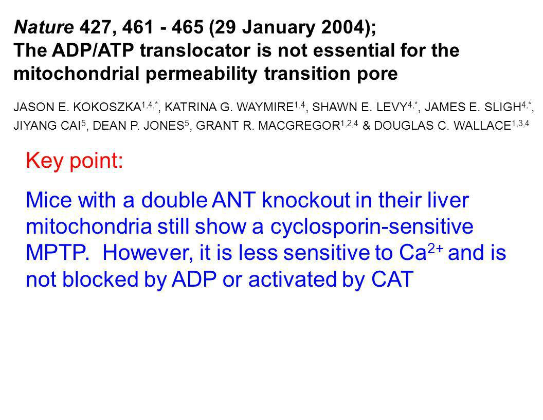 Nature 427, 461 - 465 (29 January 2004); The ADP/ATP translocator is not essential for the mitochondrial permeability transition pore JASON E. KOKOSZK
