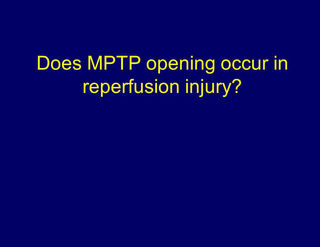 Does MPTP opening occur in reperfusion injury?