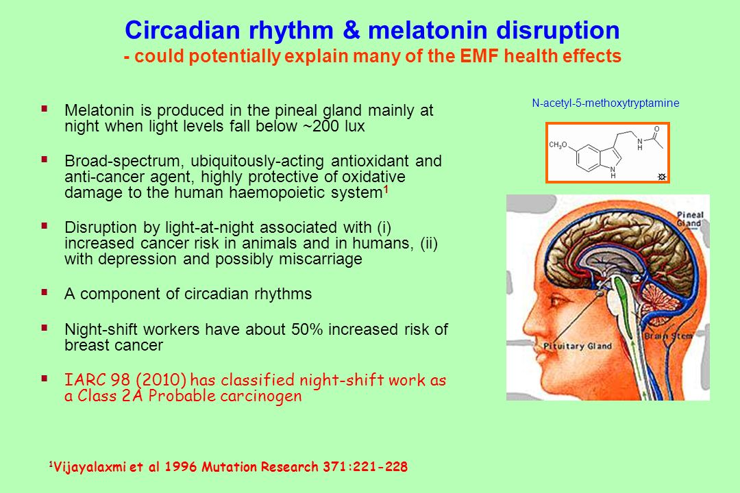 Circadian rhythm & melatonin disruption - could potentially explain many of the EMF health effects Melatonin is produced in the pineal gland mainly at