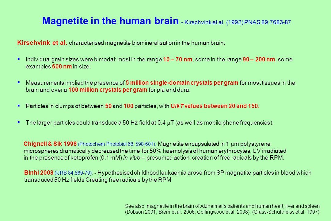 Magnetite in the human brain - Kirschvink et al. (1992) PNAS 89:7683-87 Kirschvink et al. characterised magnetite biomineralisation in the human brain