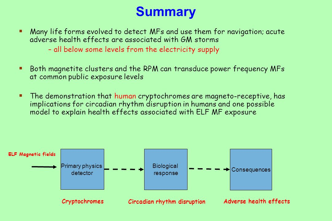 Summary Many life forms evolved to detect MFs and use them for navigation; acute adverse health effects are associated with GM storms – all below some