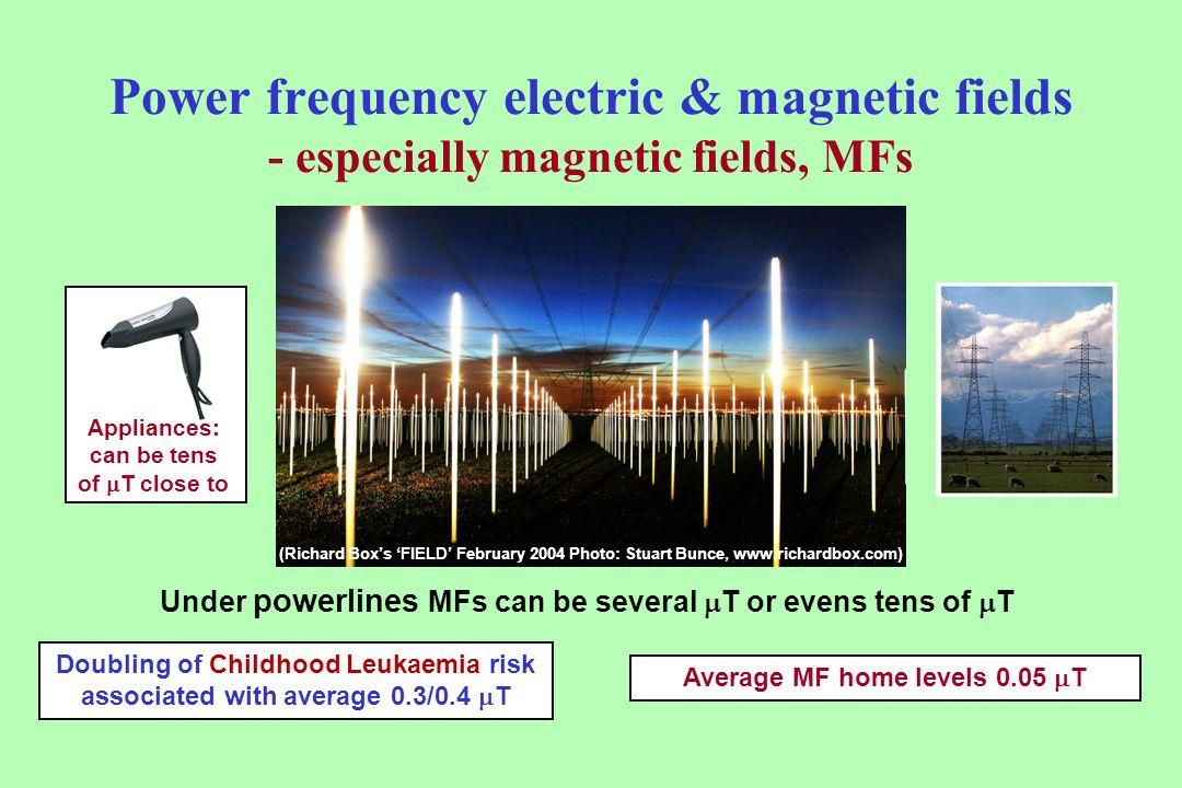 Power frequency electric & magnetic fields - especially magnetic fields, MFs (Richard Boxs FIELD February 2004 Photo: Stuart Bunce, www.richardbox.com