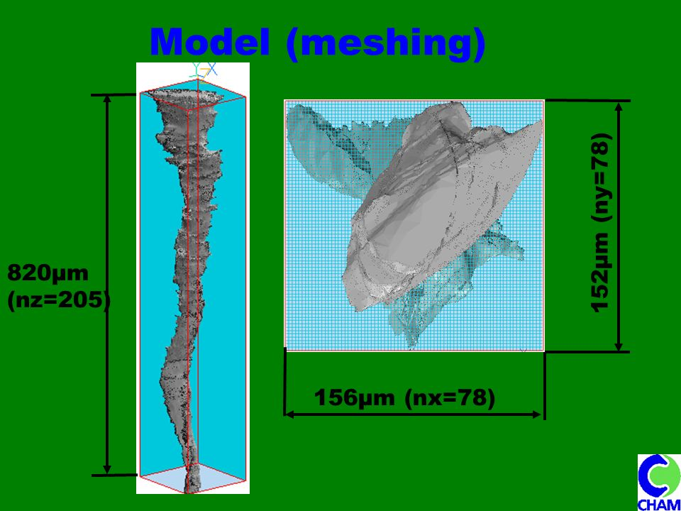 Model (meshing) 820μm (nz=205) 156μm (nx=78) 152μm (ny=78)