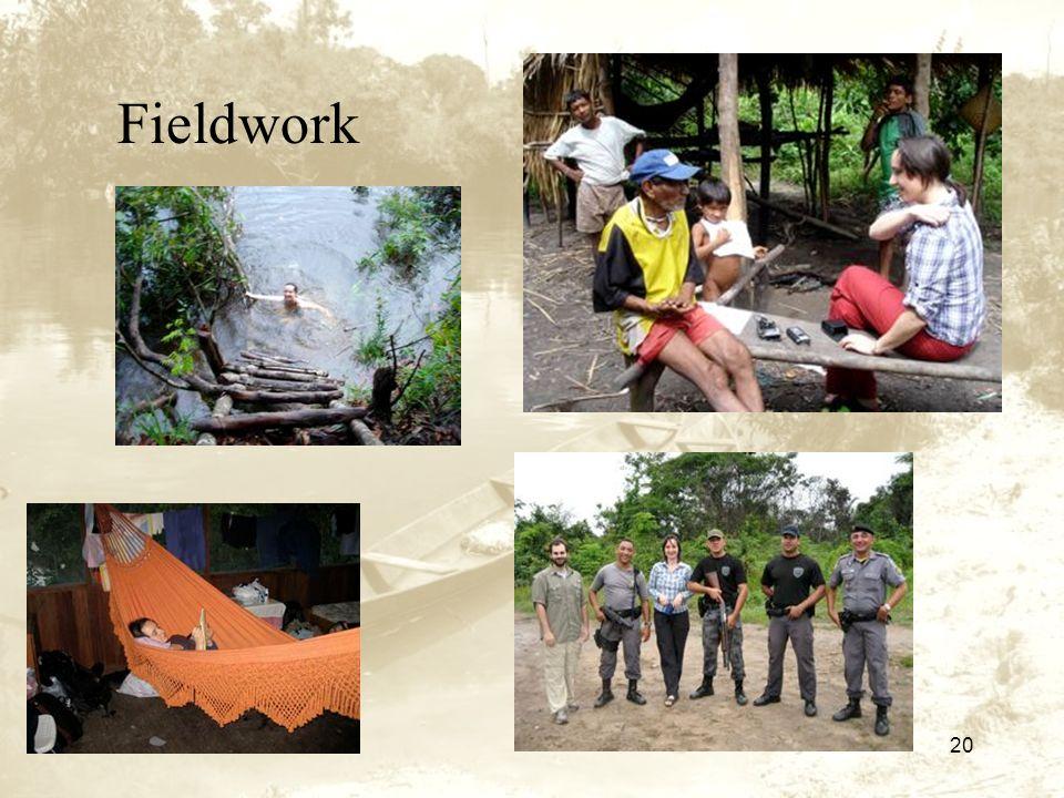 20 Fieldwork