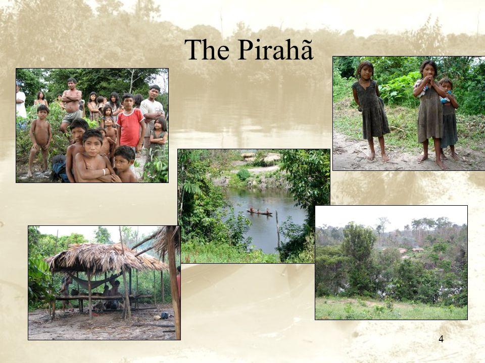 4 The Pirahã