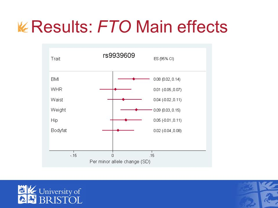 Results: FTO Main effects rs9939609