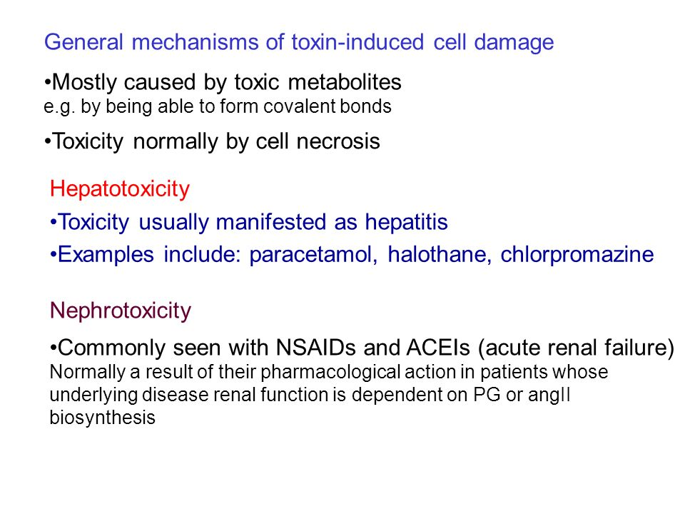 General mechanisms of toxin-induced cell damage Mostly caused by toxic metabolites e.g. by being able to form covalent bonds Hepatotoxicity Toxicity u