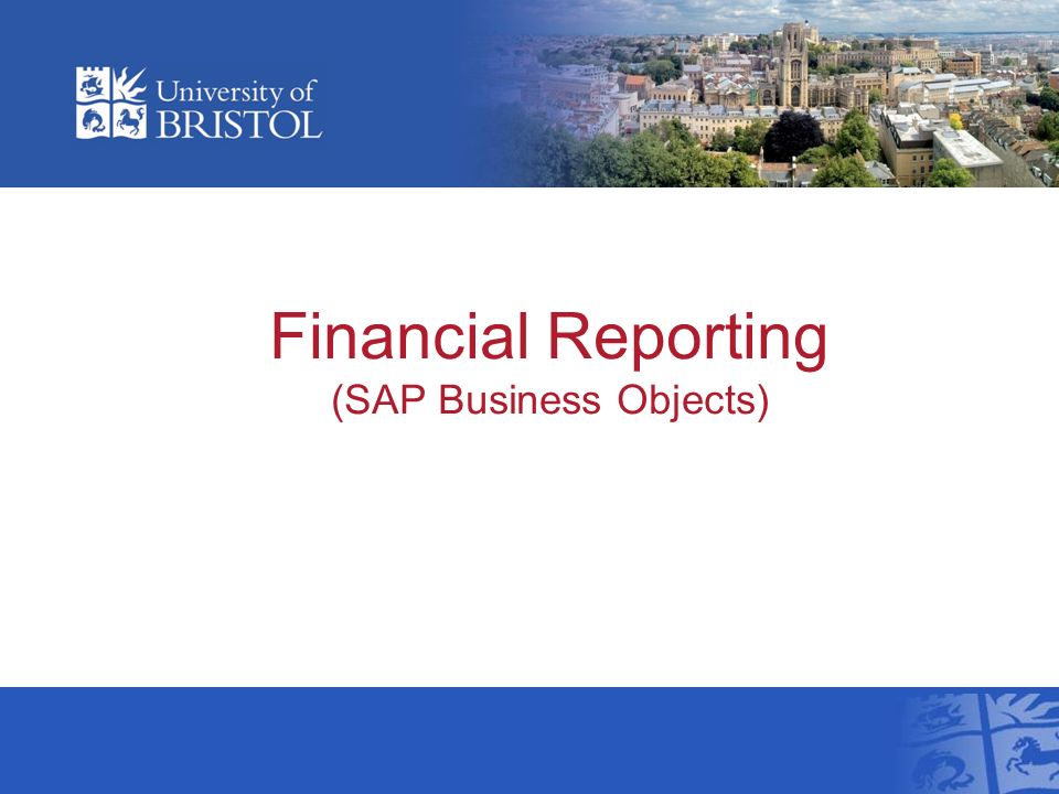 Financial Reporting (SAP Business Objects)