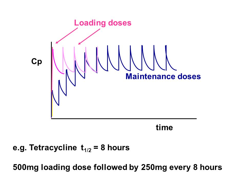 time Cp Loading doses e.g. Tetracycline t 1/2 = 8 hours 500mg loading dose followed by 250mg every 8 hours Maintenance doses