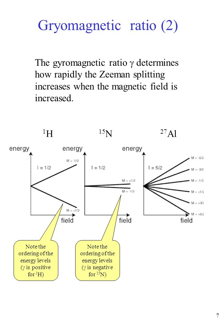 7 The gyromagnetic ratio determines how rapidly the Zeeman splitting increases when the magnetic field is increased. Gryomagnetic ratio (2) 1H1H 15 N