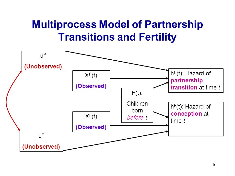 6 Multiprocess Model of Partnership Transitions and Fertility h P (t): Hazard of partnership transition at time t h F (t): Hazard of conception at time t F(t): Children born before t X P (t) (Observed) X F (t) (Observed) u F (Unobserved) u P (Unobserved)