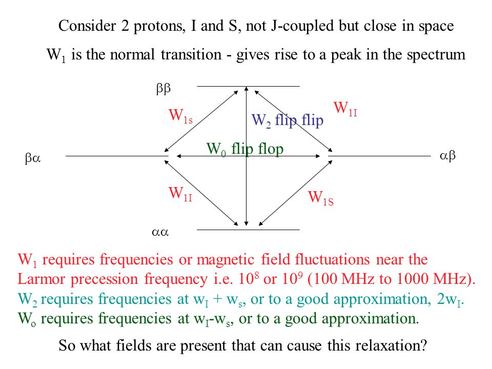 W 2 flip flip W 0 flip flop Consider 2 protons, I and S, not J-coupled but close in space W 1s W 1I W 1S W 1I W 1 is the normal transition - gives ris