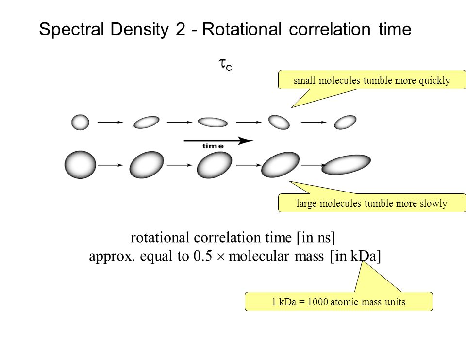 Spectral Density 2 - Rotational correlation time c small molecules tumble more quickly large molecules tumble more slowly rotational correlation time